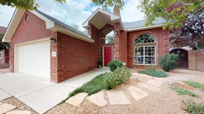 Albuquerque Single Family Home For Sale: 7517 Rosette Drive NW