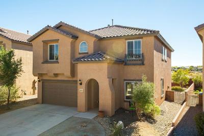 Albuquerque, Rio Rancho Single Family Home For Sale: 3604 Plano Vista Road NE