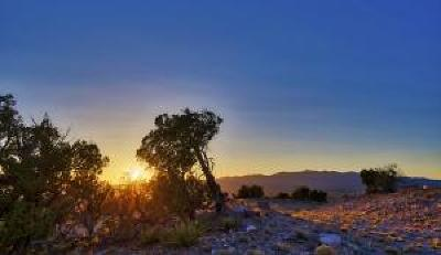 Torrance County Residential Lots & Land For Sale: 1464 Deer Canyon Trail