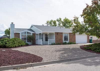 Rio Rancho Single Family Home For Sale: 1612 Salt River Court NE