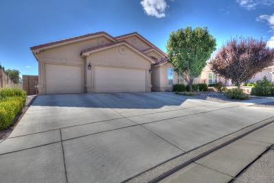Albuquerque Single Family Home For Sale: 8600 Warm Springs Road NW