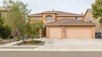 Albuquerque Single Family Home For Sale: 6527 Avenida Madrid NW
