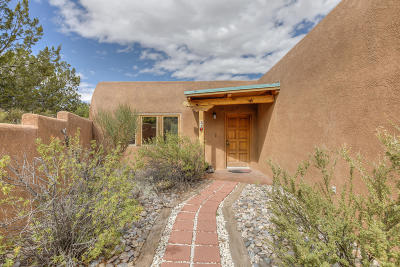 Placitas Single Family Home For Sale: 33 Sage Hill Drive