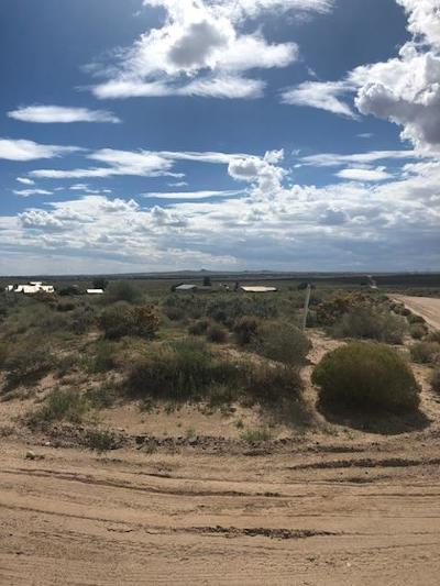 Sandoval County Residential Lots & Land For Sale: 1660 14th Road SE
