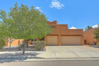 Albuquerque Single Family Home For Sale: 10804 Rocky Mountain Drive NW