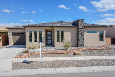 Albuquerque Single Family Home For Sale: 7908 Teaberry Road NW