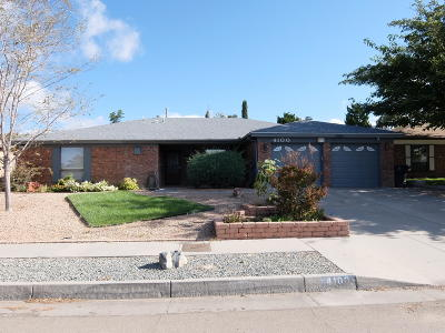 Albuquerque Single Family Home For Sale: 4100 Glen Canyon Road NE