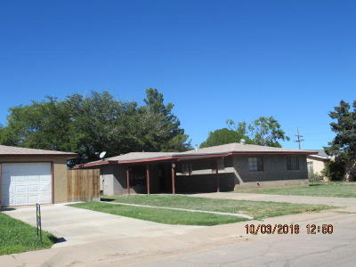 Roswell Single Family Home For Sale: 1204 Rancho Road