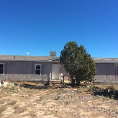 Santa Fe County Single Family Home For Sale: 28 Bullsnake Trail