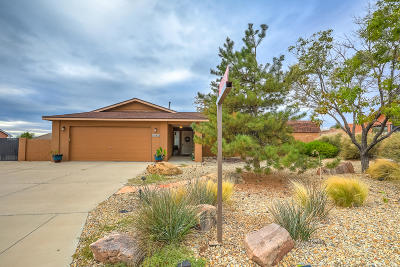 Rio Rancho Single Family Home For Sale: 6924 Redondo Peak Road NE
