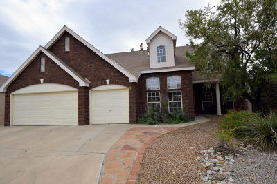 Albuquerque Single Family Home For Sale: 2404 Oakbrook Drive NW