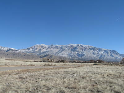 Bernalillo County Residential Lots & Land For Sale: 8520 Elena Drive NE