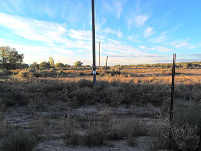 Residential Lots & Land For Sale: 110 Frazee Road SW
