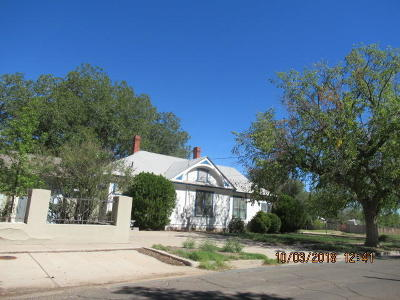 Roswell Single Family Home For Sale: 702 Richardson Avenue