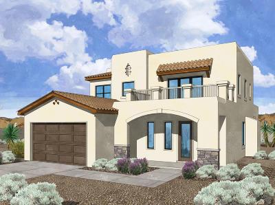 Placitas, Bernalillo Single Family Home For Sale: 1135 Palo Alto