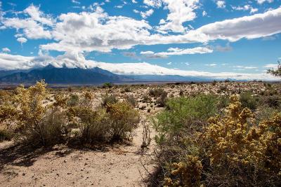 Sandoval County Residential Lots & Land For Sale: 6006 La Paz NE