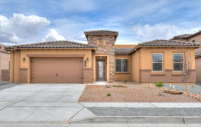 Albuquerque Single Family Home For Sale: 2104 Torrent Drive