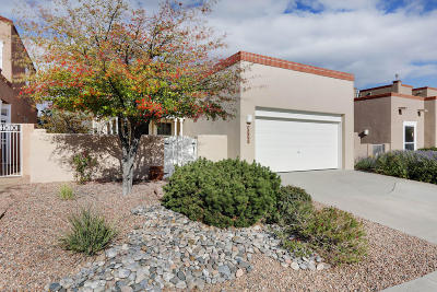Albuquerque Single Family Home For Sale: 5711 Vulcan Vista Drive NE