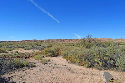 Residential Lots & Land For Sale: Tr 164D1 Frontage Road
