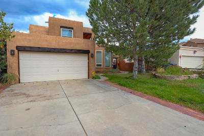 Albuquerque Single Family Home For Sale: 6008 Placer Drive NE