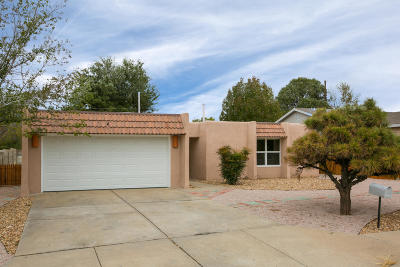 Albuquerque Single Family Home For Sale: 3213 Judy Place NE