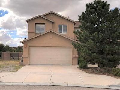 Albuquerque Single Family Home For Sale: 10405 Safford Place NW