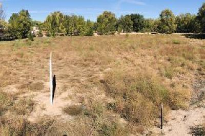 Corrales Residential Lots & Land For Sale: Lot 4 Val Verde Estates