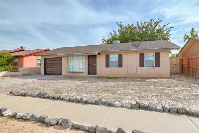 Albuquerque Single Family Home For Sale: 7520 Frederick Lane SW