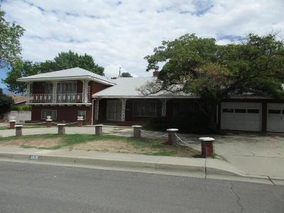Albuquerque Single Family Home For Sale: 1408 Dakota Street NE
