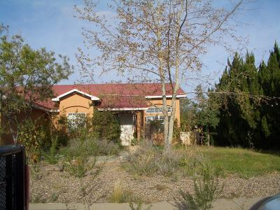 Valencia County Single Family Home For Sale: 1836 Ash Drive SW