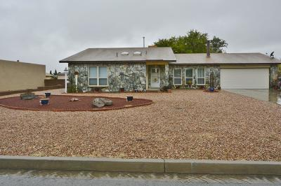 Rio Rancho Single Family Home For Sale: 2102 Western Hills Drive NE