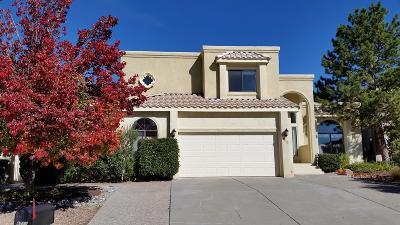 Single Family Home For Sale: 8715 Vineyard Ridge Road NE