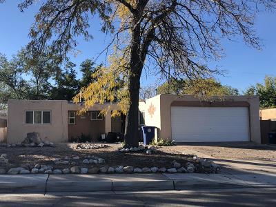 Albuquerque Single Family Home Active Under Contract - Short : 10516 Towner Avenue NE