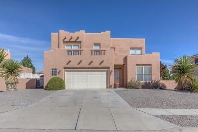 Rio Rancho Single Family Home For Sale: 4981 Night Hawk Drive NE