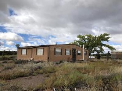 Socorro County Residential Lots & Land For Sale: 91 Nm Hwy 169