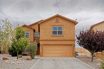 Rio Rancho Single Family Home For Sale: 1332 Desert Paintbrush Loop