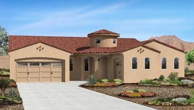 Rio Rancho Single Family Home For Sale: 1821 Blanca Peak Trail NE