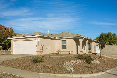 Albuquerque Single Family Home For Sale: 10600 Albero Rosso Drive NW