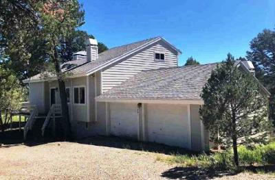 Ruidoso Single Family Home For Sale: 214 Gavilan Hills Drive