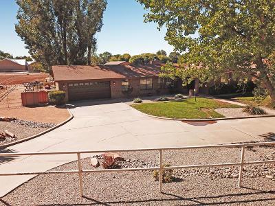 Albuquerque Single Family Home For Sale: 503 Zartman Road SW