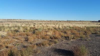 Albuquerque Residential Lots & Land For Sale: 6623 Sujeto Road