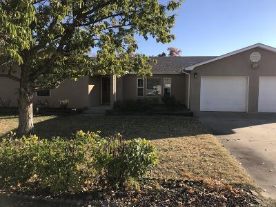 Single Family Home For Sale: 1185 Bonita Drive