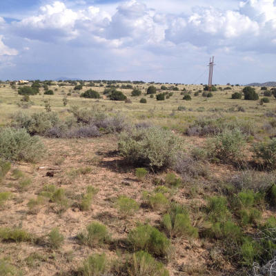 Algodones NM Residential Lots & Land For Sale: $89,950