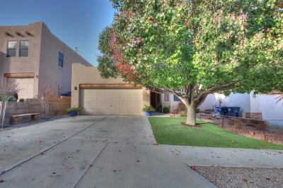 Albuquerque Single Family Home For Sale: 3863 Crystalaire Avenue NW