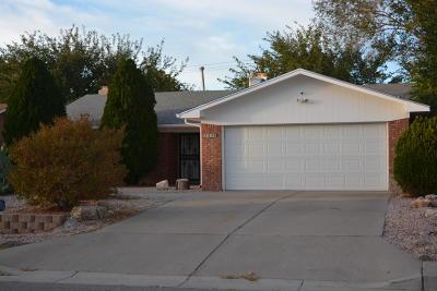 Single Family Home For Sale: 7233 Prairie Road NE