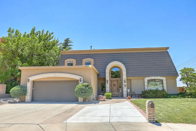 Single Family Home For Sale: 7009 Pala Mesa Court NE