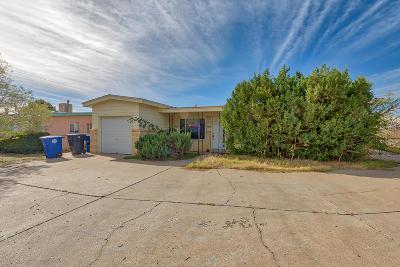 Albuquerque Single Family Home Active Under Contract - Short : 709 Grace Street NE