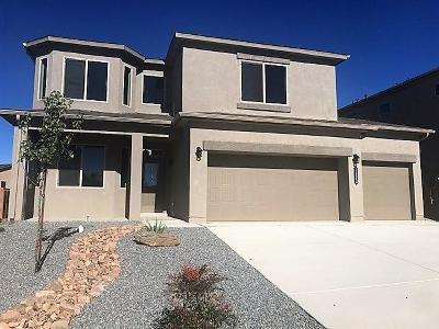 Rio Rancho Single Family Home For Sale: 1123 Grace Street NE