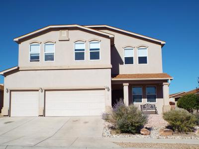 Valencia County Single Family Home For Sale: 3460 Wagon Wheel Street SW