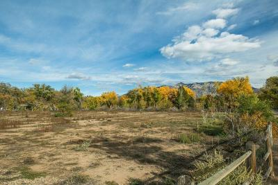 Corrales Residential Lots & Land For Sale: 5910 Corrales Road NE